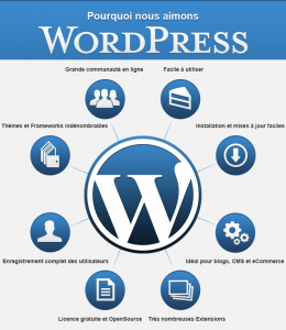 site wordpress- agence metapro